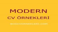 Modern Cv Örnekleri 1