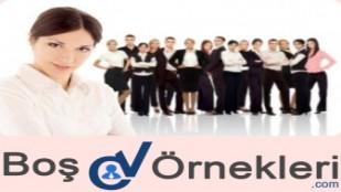 2017 CV İş Bilgisi Özellikleri